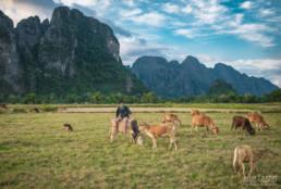 Landscape, Vang Vieng